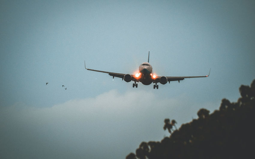 A plane about
