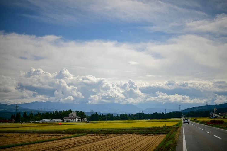 Stay on these roads. Cloud - Sky Sky Landscape Agriculture Environment Field Land Rural Scene Scenics - Nature Beauty In Nature Nature Tranquil Scene Farm Road Tranquility Transportation Day Mountain No People