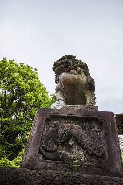 Kyoto, May 2017. Gion Gion In Kyoto Gion-jinja Kyoto, Japan Yasaka-jinja Shrine Gion Kyoto Gion Shrine Kyoto Maruyama Maruyama Park Shijo Dori Yasaka Shrine 八坂神社 円山公園 四条通 祇園神社