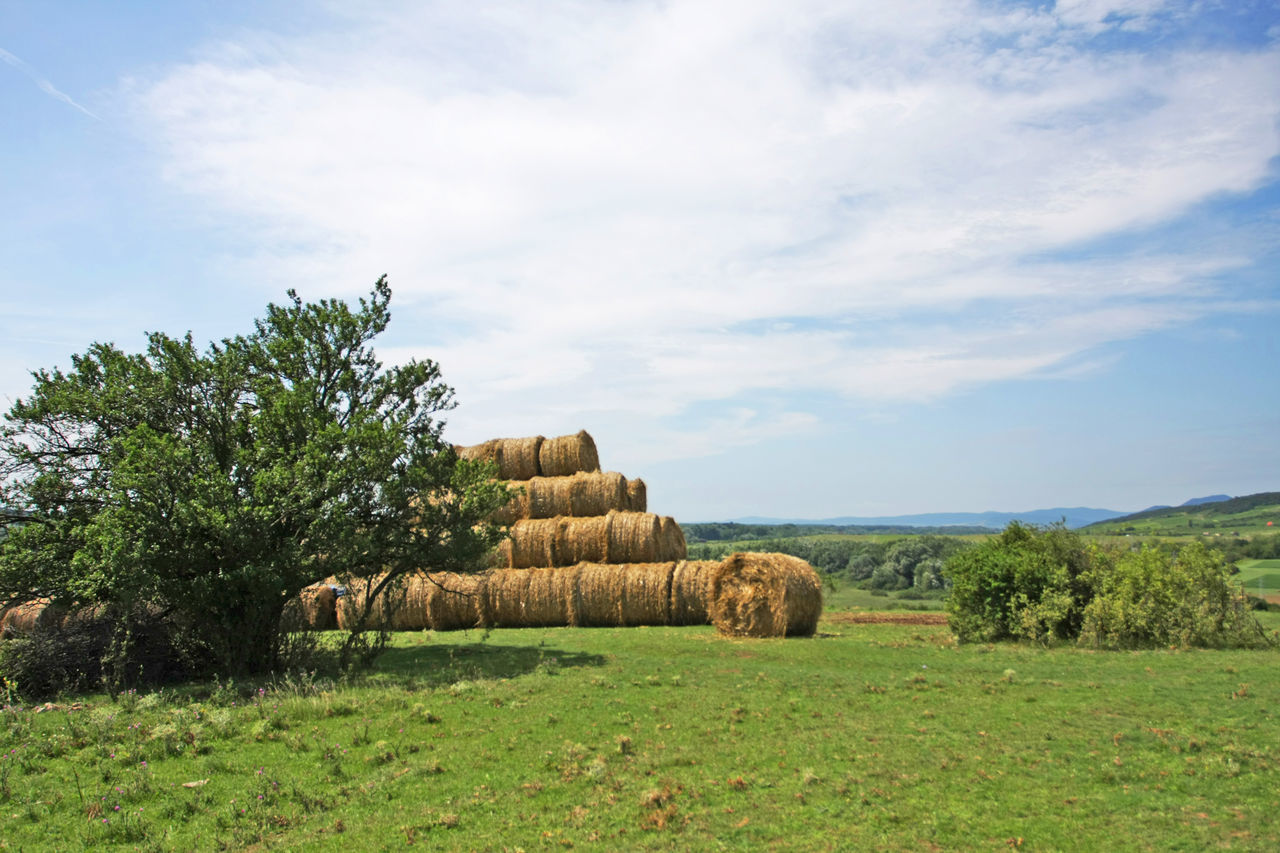 Hay Bales On Agricultural Field Against Sky