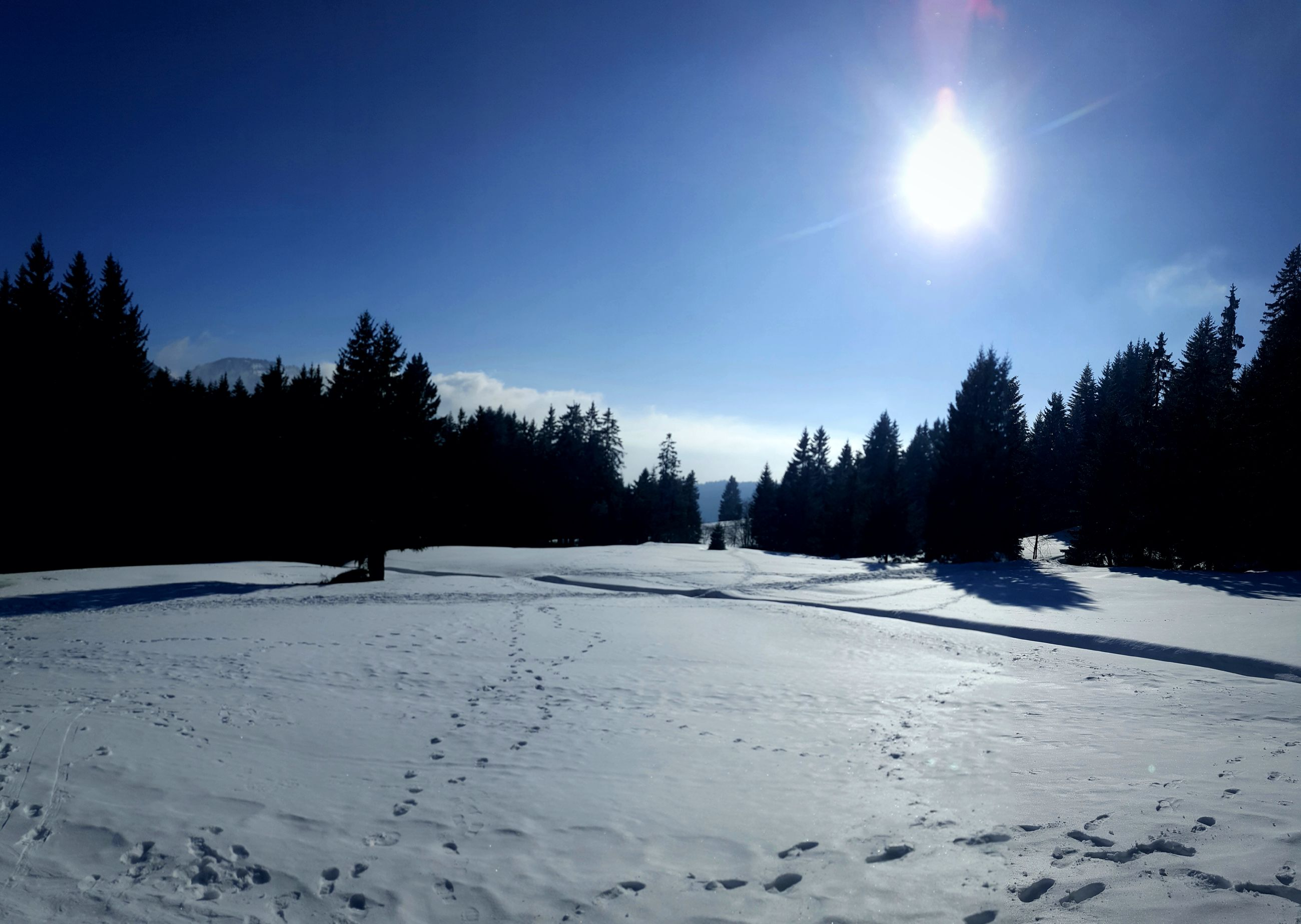 snow, winter, cold temperature, nature, tranquility, beauty in nature, scenics, tranquil scene, sun, sunlight, no people, tree, landscape, sky, outdoors, moon, clear sky, day
