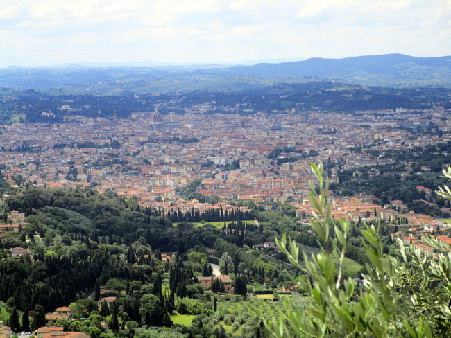 Fiesole Florence Florence Italy Italy Leaves Panoramic Panoramic Landscape Panoramic Photography Panoramic View Tuscany