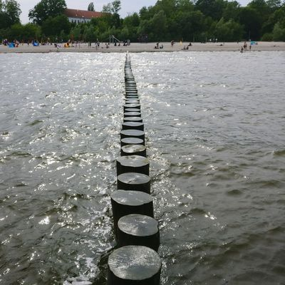 Tree Water Lake In A Row Shore Sandy Beach Repetition Wooden Post