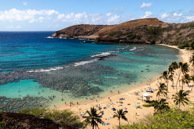 Hanauma Bay Beach Beauty In Nature Coastline Hanauma Bay Hawaii High Angle View Oahu Ocean Palm Trees Scenics Shore Summer The Essence Of Summer Tourism Turquoise Colored USA Water Waves Landscapes Feel The Journey Original Experiences People And Places