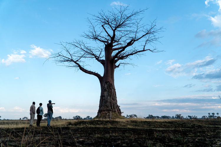 People standing by bare tree on field against sky