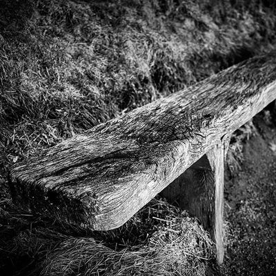 """ The Old Bench "" Bench Woodwork  Woodgrain Blackandwhite Bnwoftheday Bnwofinstagram Monochrome Monochromeoftheday Contrast Grain Contrast Shadows"
