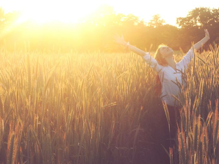Woman On Wheat Field At Sunset