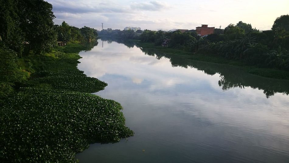Pasigriver Pasig City River View River Collection