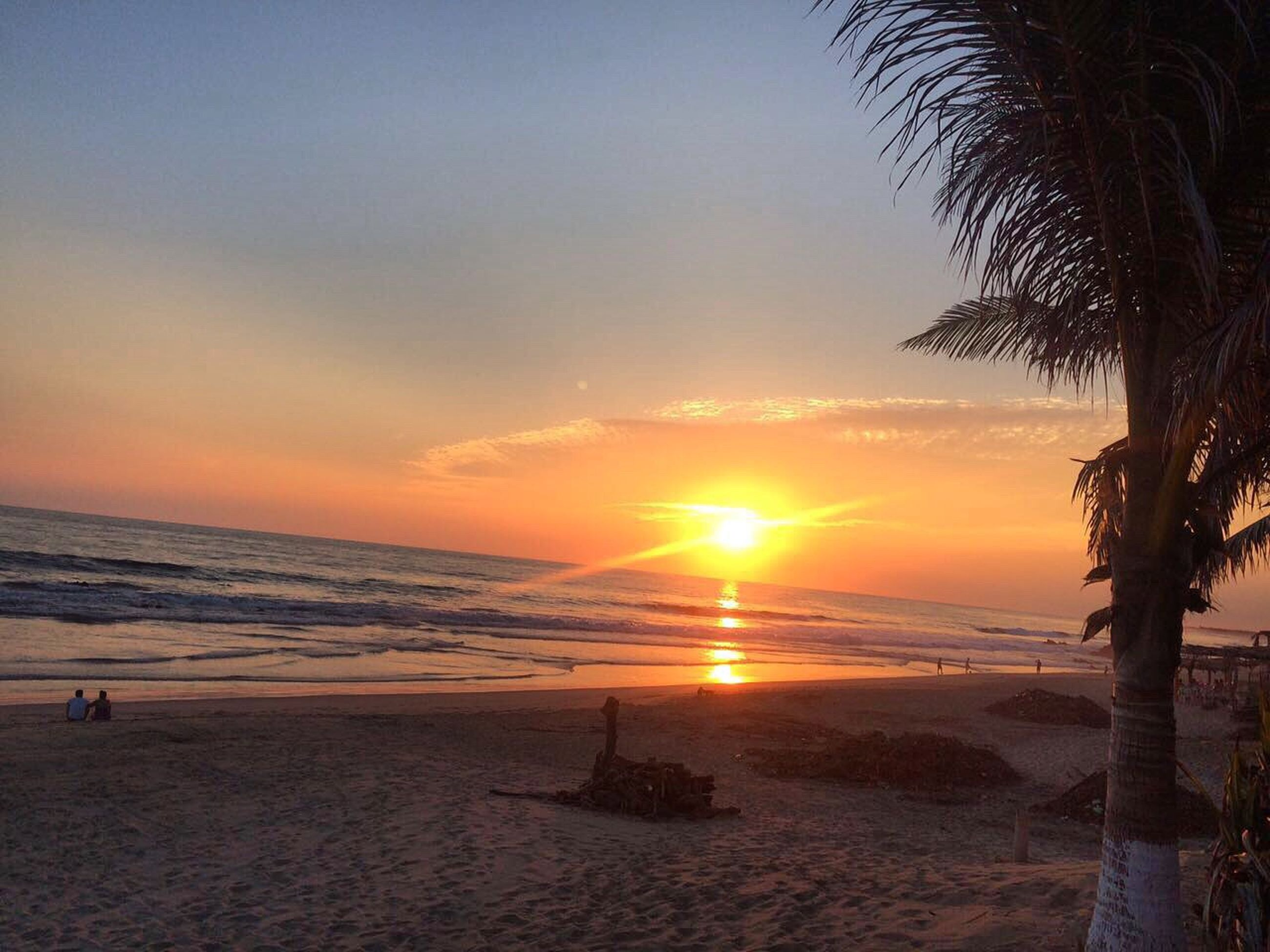 sea, beach, sunset, horizon over water, water, shore, sun, scenics, tranquil scene, beauty in nature, tranquility, sand, sky, idyllic, nature, orange color, palm tree, sunlight, incidental people, vacations