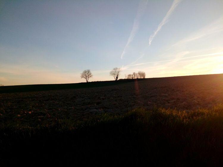 Sunrise Sunset Coucher De Soleil Lever De Soleil Nature Beauty Nature Beauty In Nature Jaune