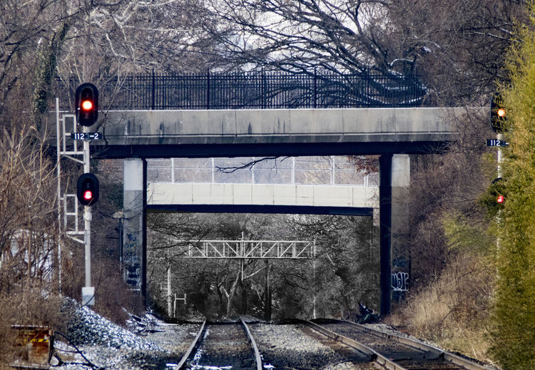 Looking down the track Long Distance  Main Line Architecture Bare Tree Bleak Branch Bridge - Man Made Structure Built Structure Cold Temperature Day Empty Nature No People Outdoors Rail Lines Rail Track Signals Snow Snowing Track Train Station Transportation Tree Warning Winter