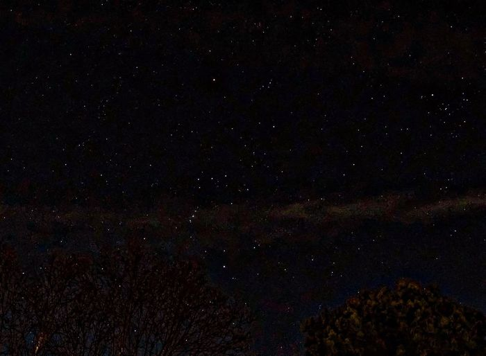 Lots of stars tonight. 👀 for Orion. Astronomy Star - Space Night Galaxy Star Field Infinity Beauty In Nature Space Constellation Sky Astrophotography 365project
