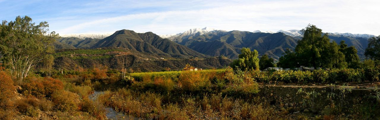 Ojai Valley With Snow Landscape shot of the Ojai valley with snow on the mountains. California Clouds Cold Fashion Forest Green Ice Landscape Mountain Mountains Nature Ojai Outdoor Outdoors Panorama Scenery Scenic Sky Snow Snowy Tourism Travel Valley Water Winter