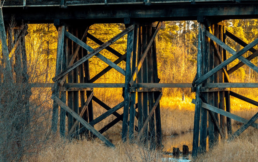 Bridges Canadian National Railway Evening Field Glow Golden Sunset Old Fashioned Railing Railroad Railroad Bridge Railroad Crossing Sunset Sunsets This Week On Eyeem Train Train Bridge Train Tracks Trainspotting Tree Vintage Wood Wood - Material Wooden Wooden Bridge WoodLand