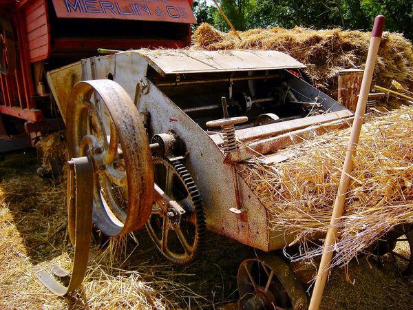 Moissonneuse Moisson Harvester Harvest France