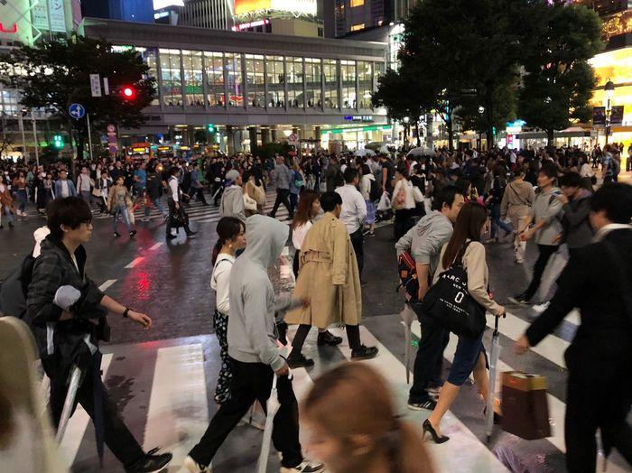 Omnomnom Shibuya Shibuyascapes City Street Crossing Shibuya Crossing Large Group Of People City Life
