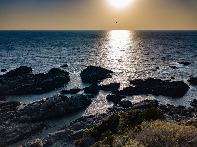 The rocky coast of Southern Japan at sunset, with a still blue sea, and a solitary eagle soaring above. ASIA Drone  Eagle Japan Pacific Reflection Rock Rocky South Travel Aerial View Beauty In Nature Bird Bird In Flight Coast Coastal Low Sun Ocean Rocks Scenery Sea Sky Solitude Southernmost Sunset