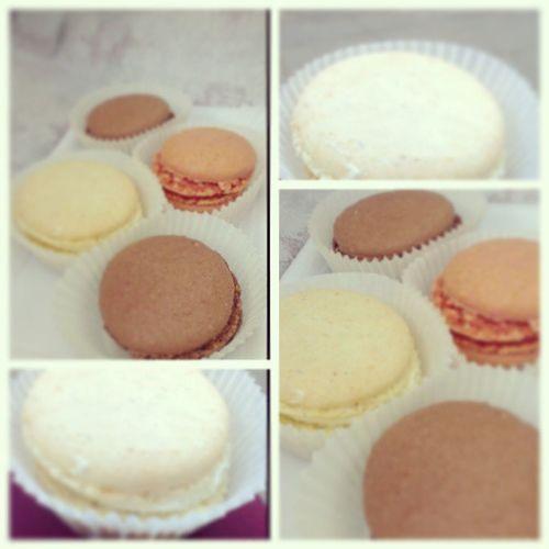 Macarons Eating Macarons Vanilla Chocolate