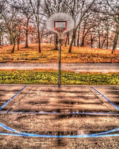NBA Basketball Hoop Iowa Timberwolves Lakers Sport Sports