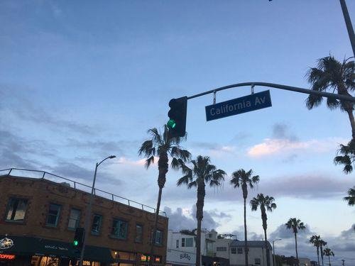 Venice Beach Abbot Kinney California Venice Beach Palm Trees Traffic Lights Streetphotography Street Life Blue Sky Abbot Kinney Spring Time