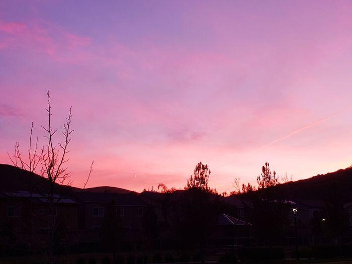 Sunrise. Sunrise Sunset Tree Sky Landscape Dramatic Sky Tranquil Scene Calm Lightning
