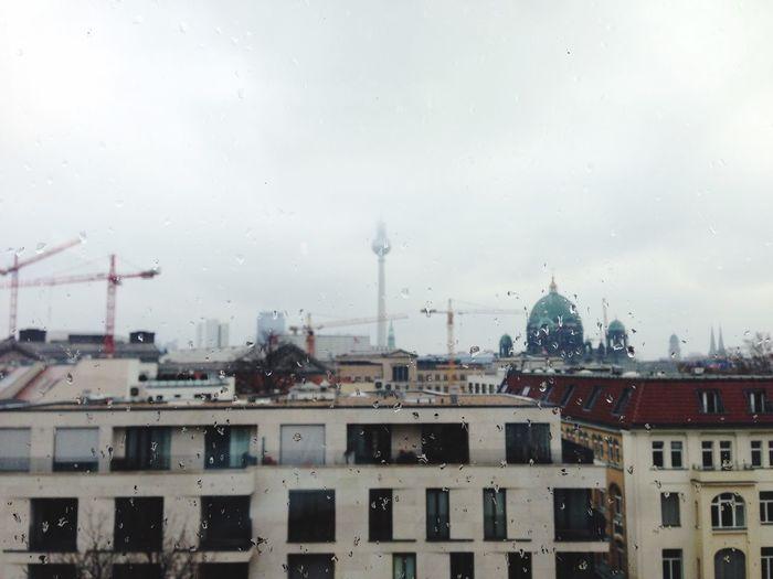 My Fuckin Berlin SCB15