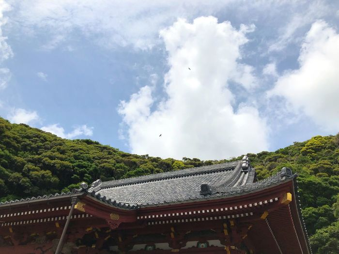 那古寺 Japan Temple Architecture Cloud - Sky Built Structure Sky Plant Tree Nature