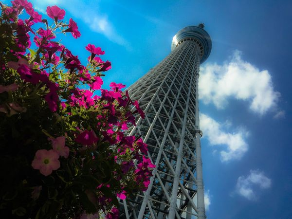 Tokyo Sky Tree Tower Blue Sky Clouds And Sky Lookup Building Cityscape Enjoying The View Tokyo Just Looking Up...