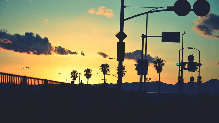 Low angle view of silhouette palm trees and poles against sky during sunset