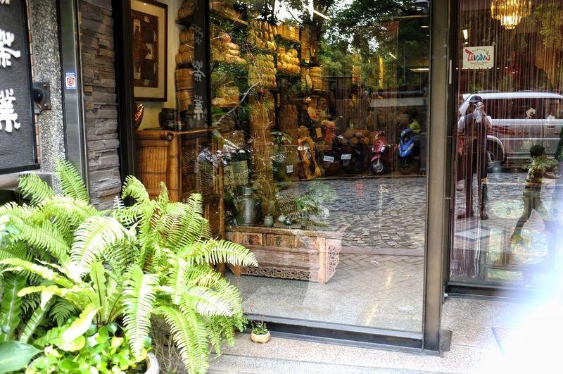 Tree Architecture Door Entrance Closed Closed Door Window Display Door Knocker Open Door Entryway Doorway Ajar Arched Front Door Locked Doormat Store Window Keyhole Mail Slot Shutter Door Handle Gate Latch Doorknob Entry