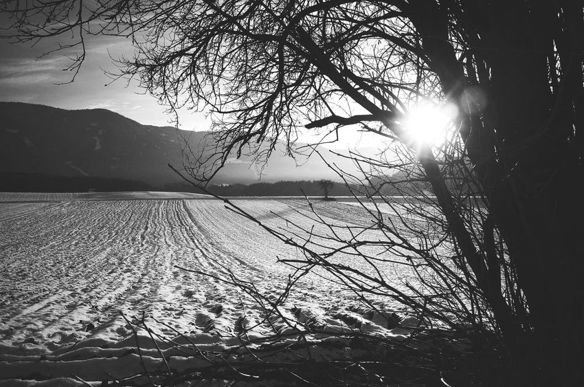 Countryside Lines Landscape Agriculture Scenics Snow Covered Dolomites South Tyrol Südtirol Country Living Beauty In Nature Season  Miles Away Weather Snow Outdoors Frame Within A Frame Mountain Range Winter Silhouette