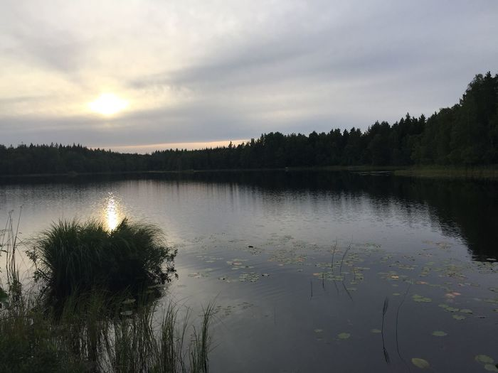 Nice evening at a small lake in Sweden Water Nature Beauty In Nature Scenics IPhone 6+