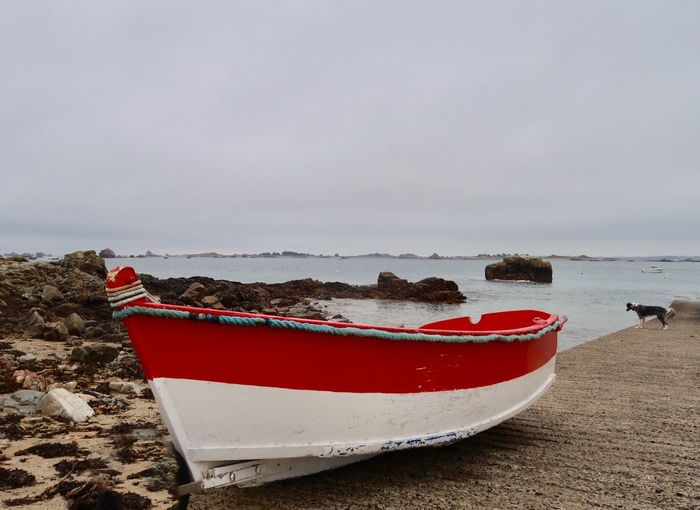 Red boat and the dog Boat Wainting Road Boat Watching Dog Sea Water Nautical Vessel Land Sky Sea Beach Mode Of Transportation Red Tranquil Scene Outdoors