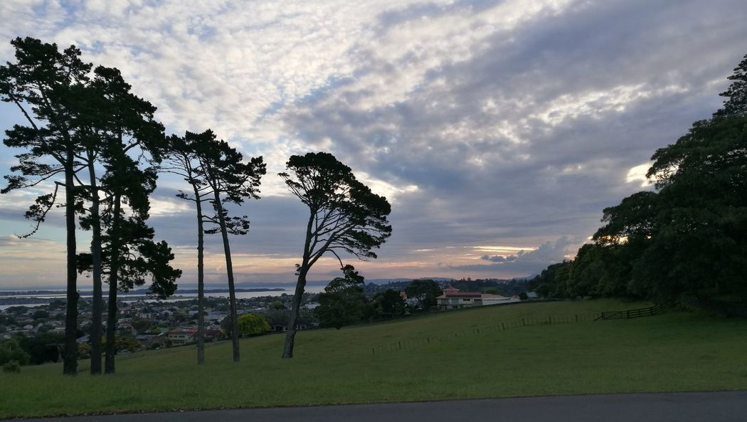 Tree Sunset Cloud - Sky Reflection Landscape Beauty In Nature Vacations Nature Water Summer Travel Destinations Outdoors Beauty No People Mountain Sky Beach Sport Forest Sea Sunsets Cornwall Park Auckland