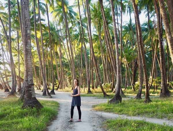 Adult Beauty In Nature Casual Clothing Day Footpath Forest Full Length Growth Land Leisure Activity Nature One Person Outdoors Palm Tree Plant Rear View Tranquility Tree Tree Trunk Tropical Climate Trunk WoodLand