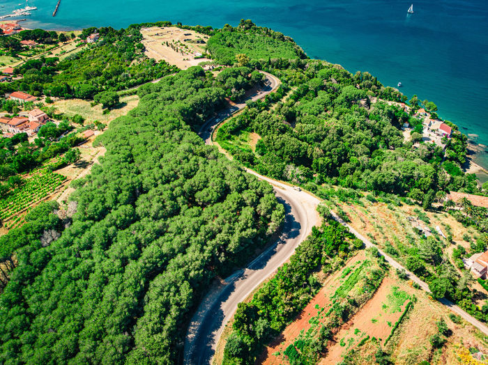 High angle view of road amidst trees and sea