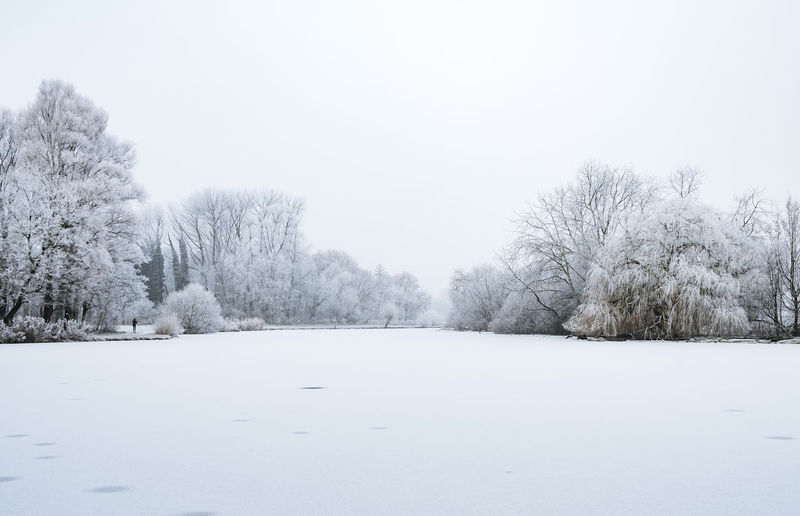 Cold Temperature Day Landscape Nature No People Outdoors Sky Snow Snowing Tree Winter