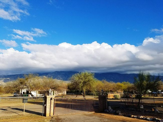 Catalina Mountains  Clouds And Sky No People Tree Cloud - Sky Travel Destinations Environment Landscape Sky Scenics Outdoors Nature Outdoor Pursuit Beauty In Nature Mountain Day