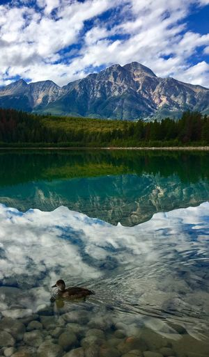 Jasper, Alberta, Canada Iphone 6 Plus Mountains And Sky Water Reflections