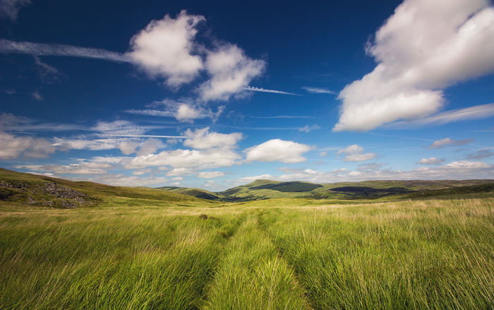 Just one of my landscapes Beautiful Brecon Beacons Grass Leading Lines Lines Nature Path Wales Cloud - Sky Clouds Landscape Mountain Outdoors Powys Rural Scene Trail Breathing Space Lost In The Landscape