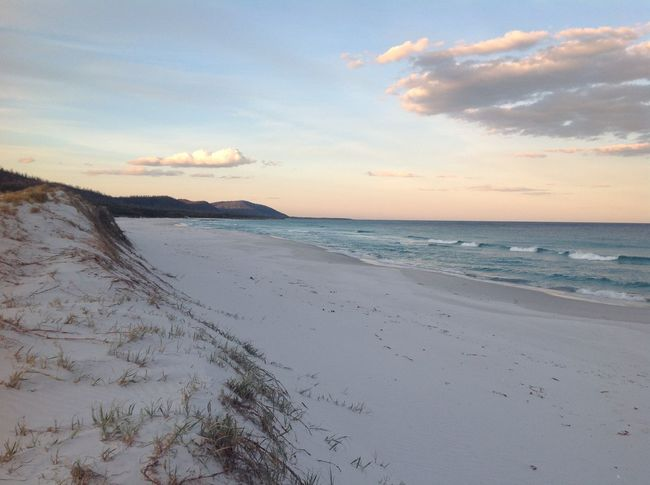 Beach Beauty In Nature Cloud - Sky Day Horizon Over Water Marram Grass Nature No People Outdoors Sand Scenics Sea Sky Sunset Tranquil Scene Tranquility Water Friendly Beaches Tasmania