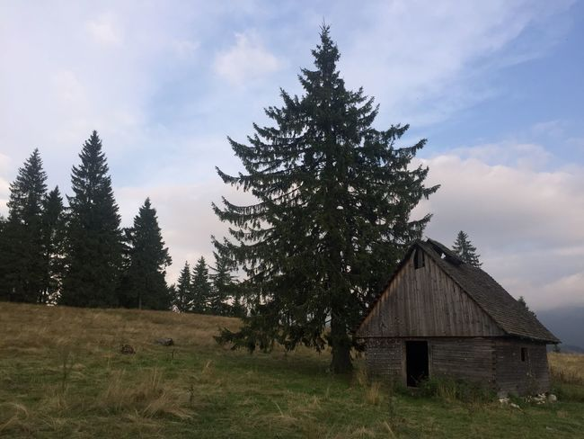 Architecture Beauty In Nature Built Structure Carpathians Day Grass Hanging Out Landscape Nature No People Outdoors Romania Scenics Sky Tranquility Travel Travel Destinations Tree EyeEmNewHere The Great Outdoors - 2017 EyeEm Awards