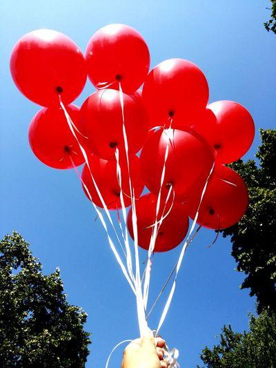 Belgrade Baloons Redballon Belgradephoto