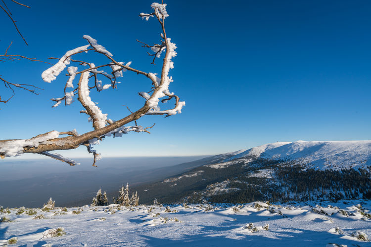 Snow covered landscape against clear blue sky