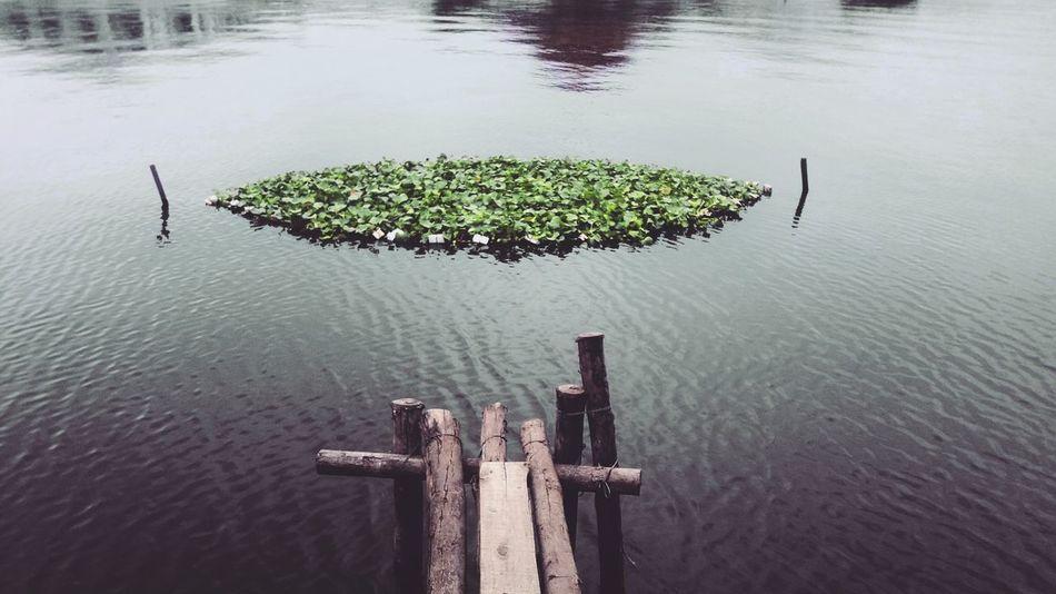Water Outdoors Lake Nature Beauty In Nature Lifestyles Hanoi, Vietnam Vietnam Lake View Nature Hanoi Vietnam  West Lake Ha Noi