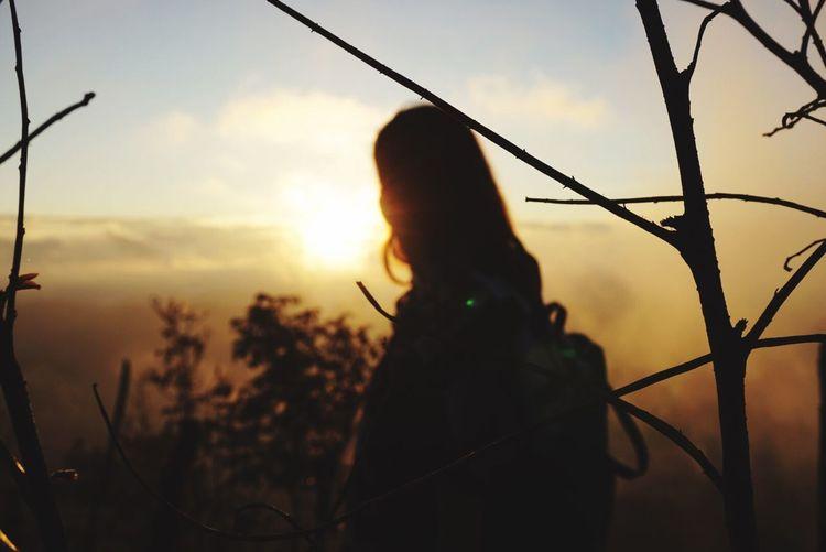 The City Light Light Up Your Life Light - Natural Phenomenon Beuty Of Light Sunlight Sunrise