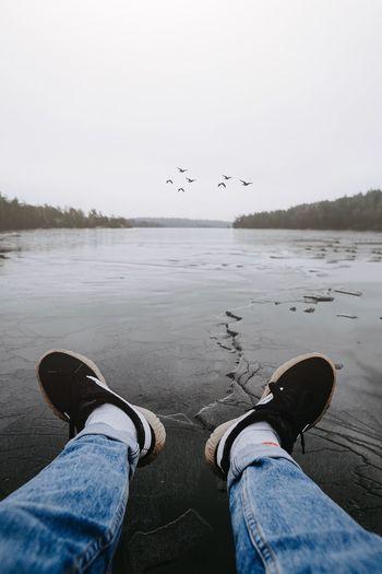 Human Leg Low