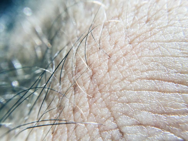 Skin Hair Hand Macro Close-up Very Close Hairy