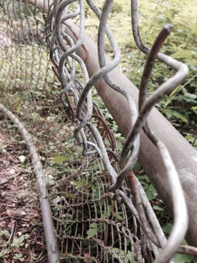Camping Fence Through The Fence Nature
