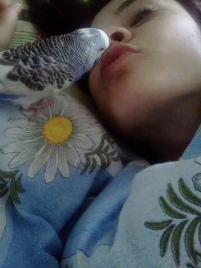Morning Kisses Lovely Bird Hello World Good Morning Sister Emotions Humans And Animals Emotional Photography Eyem Animal Lovers